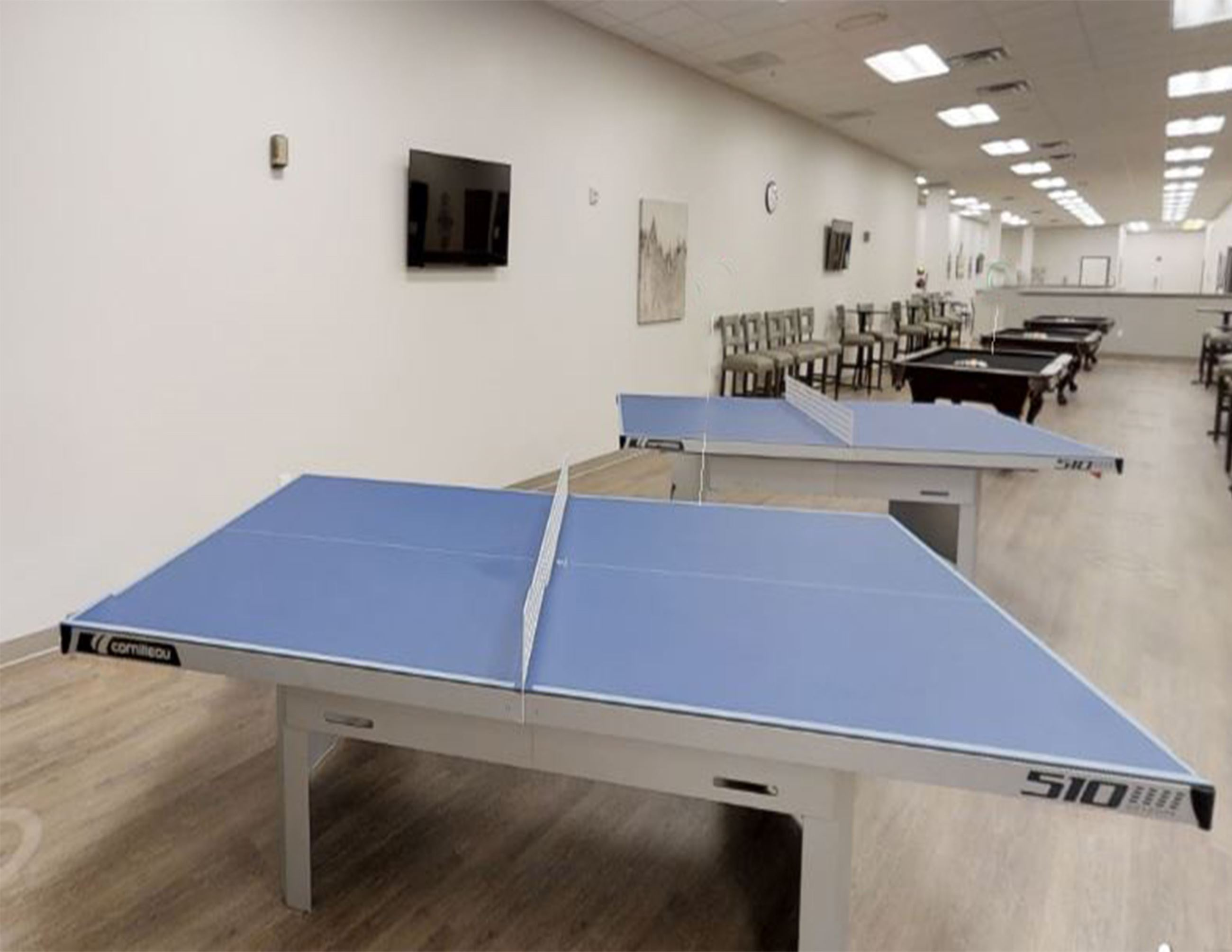 Wellmed PingPong and Pool